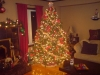 My mom\'s Christmas tree 2007... it was the most beautiful tree I ever saw, it just glowed with beauty and it was so comforting to look at, so beautiful and peaceful. Mom my was an amazing decorator and christmas was here favorate.